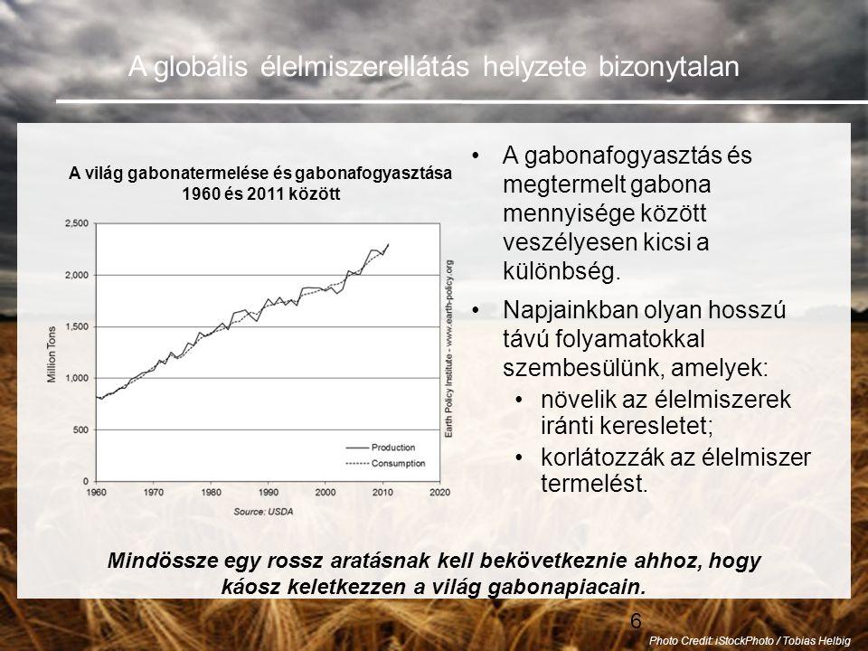 6 A globális élelmiszerellátás helyzete bizonytalan •A gabonafogyasztás és megtermelt gabona mennyisége között veszélyesen kicsi a különbség.