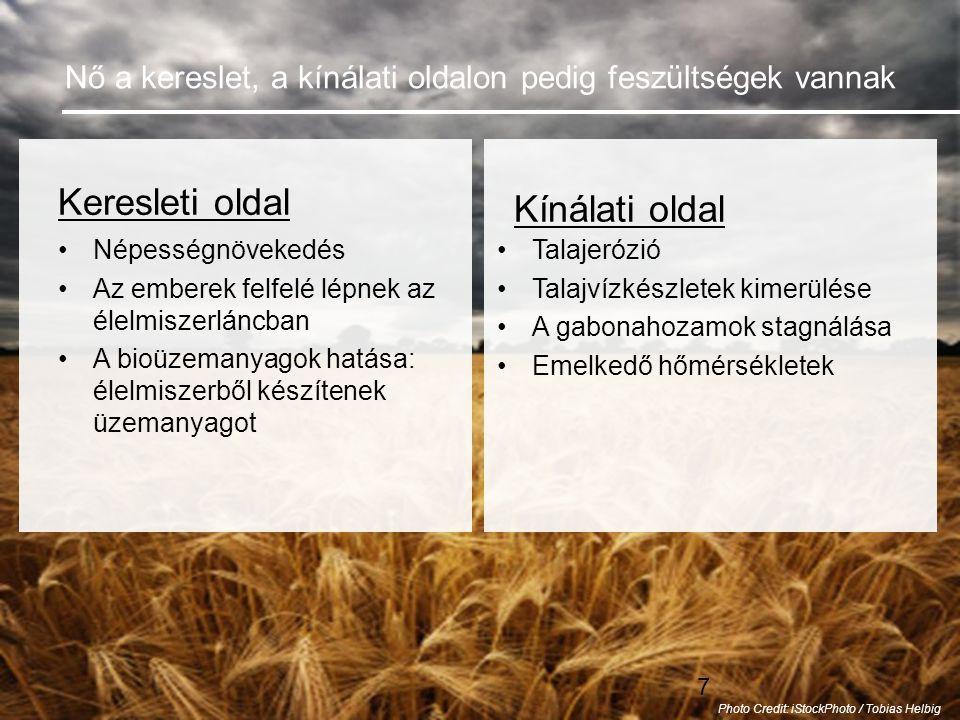 7 Nő a kereslet, a kínálati oldalon pedig feszültségek vannak Keresleti oldal •Népességnövekedés •Az emberek felfelé lépnek az élelmiszerláncban •A bioüzemanyagok hatása: élelmiszerből készítenek üzemanyagot Kínálati oldal •Talajerózió •Talajvízkészletek kimerülése •A gabonahozamok stagnálása •Emelkedő hőmérsékletek Photo Credit: iStockPhoto / Tobias Helbig