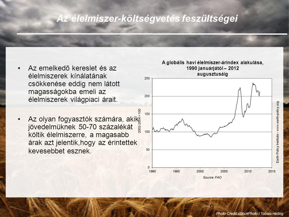 """50 Nincs már """"normálisnak mondható időjárás •A múltban az extrém időjárási események anomáliának számítottak, és a gazdák arra számíthattak, hogy a következő aratás idejére az időjárás visszatér a korábbi megszokott viszonyokhoz."""