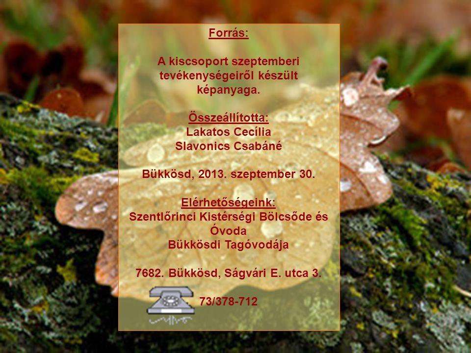 Forrás: A kiscsoport szeptemberi tevékenységeiről készült képanyaga. Összeállította: Lakatos Cecília Slavonics Csabáné Bükkösd, 2013. szeptember 30. E