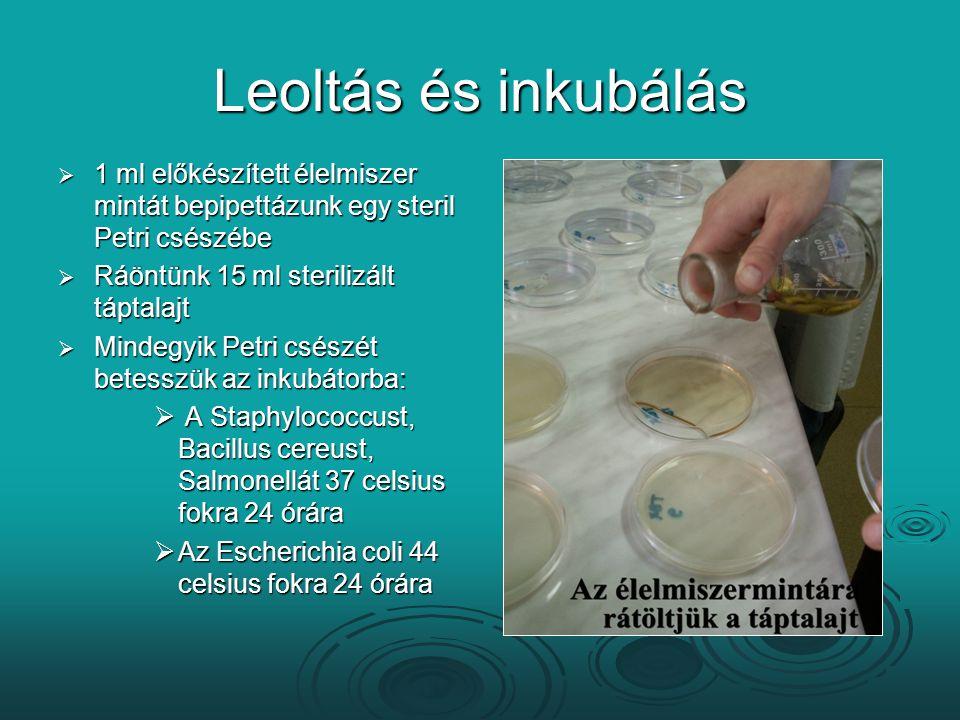 Leoltás és inkubálás  1 ml előkészített élelmiszer mintát bepipettázunk egy steril Petri csészébe  Ráöntünk 15 ml sterilizált táptalajt  Mindegyik