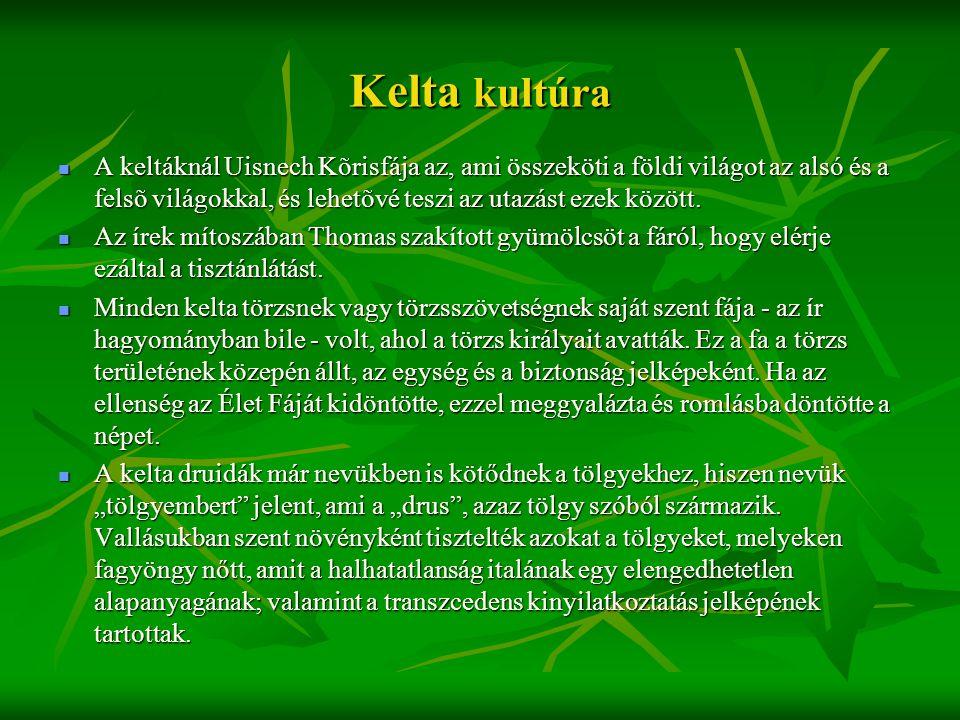 Kelta kultúra  A keltáknál Uisnech Kõrisfája az, ami összeköti a földi világot az alsó és a felsõ világokkal, és lehetõvé teszi az utazást ezek közöt