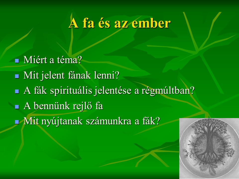A fa és az ember  Miért a téma?  Mit jelent fának lenni?  A fák spirituális jelentése a régmúltban?  A bennünk rejlő fa  Mit nyújtanak számunkra