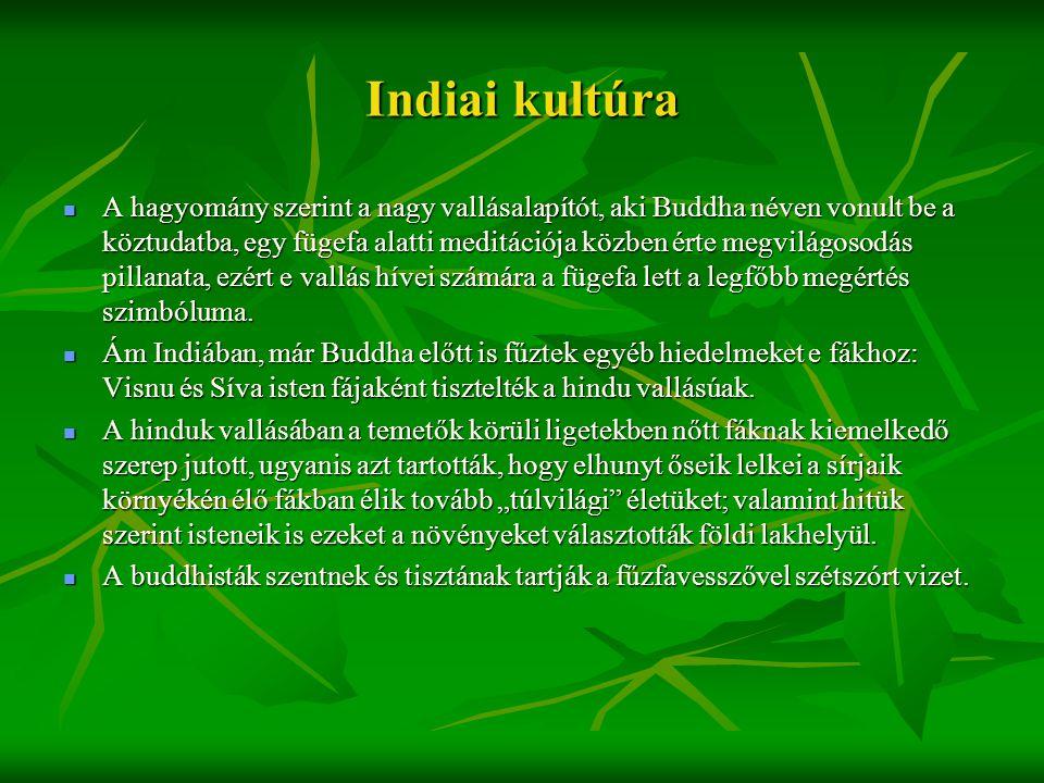 Indiai kultúra  A hagyomány szerint a nagy vallásalapítót, aki Buddha néven vonult be a köztudatba, egy fügefa alatti meditációja közben érte megvilá