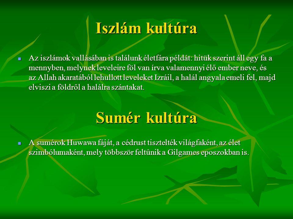 Iszlám kultúra  Az iszlámok vallásában is találunk életfára példát: hitük szerint áll egy fa a mennyben, melynek leveleire föl van írva valamennyi él