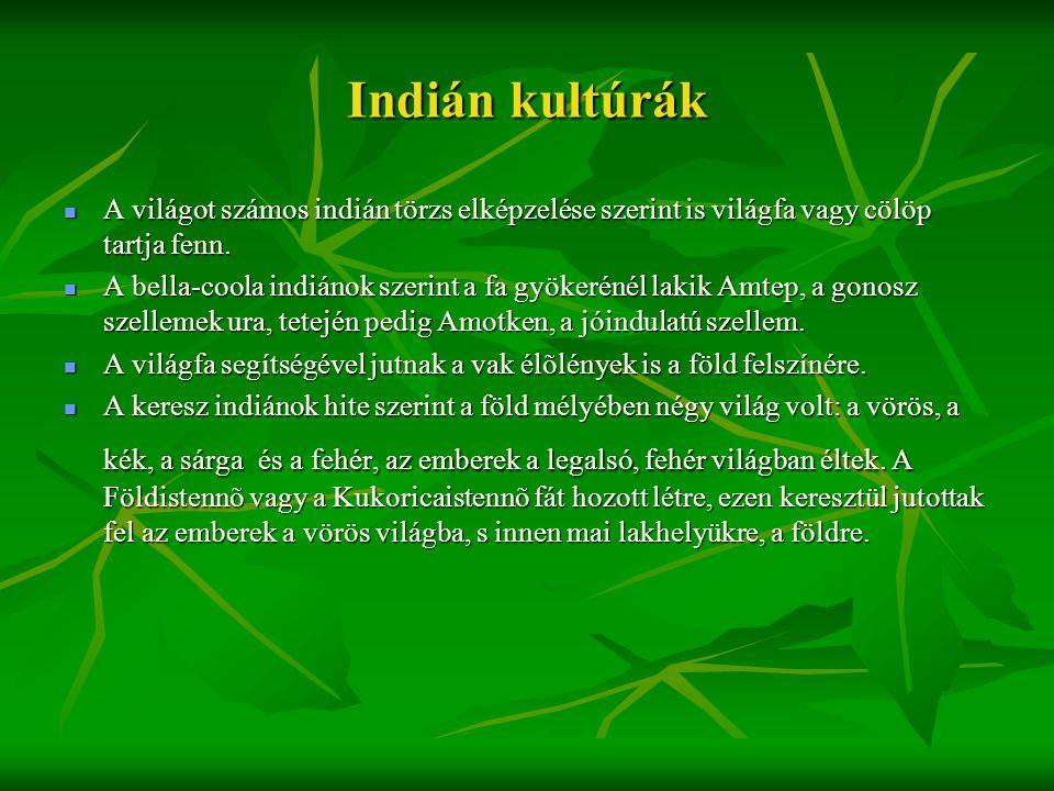 Indián kultúrák  A világot számos indián törzs elképzelése szerint is világfa vagy cölöp tartja fenn.  A bella-coola indiánok szerint a fa gyökeréné
