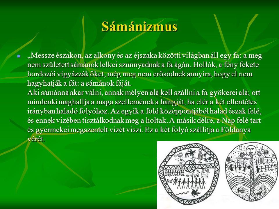 """Sámánizmus  """"Messze északon, az alkony és az éjszaka közötti világban áll egy fa: a meg nem született sámánok lelkei szunnyadnak a fa ágán. Hollók, a"""
