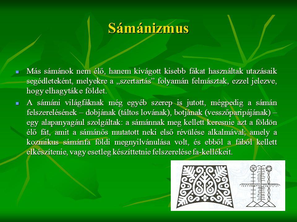 """Sámánizmus  Más sámánok nem élő, hanem kivágott kisebb fákat használtak utazásaik segédleteként, melyekre a """"szertartás"""" folyamán felmásztak, ezzel j"""