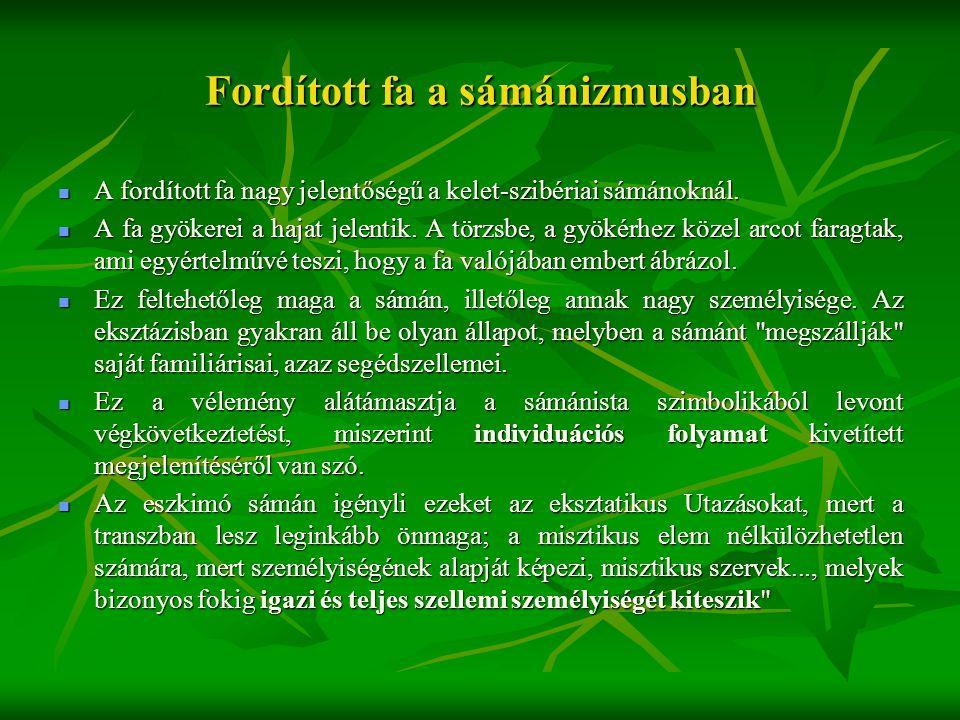Fordított fa a sámánizmusban  A fordított fa nagy jelentőségű a kelet-szibériai sámánoknál.  A fa gyökerei a hajat jelentik. A törzsbe, a gyökérhez