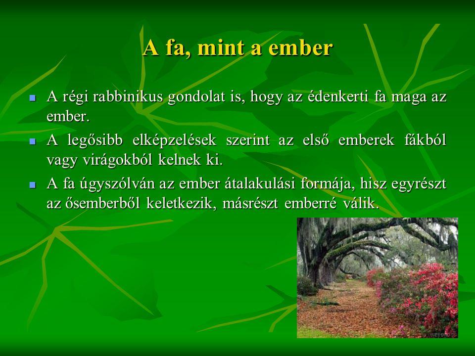 A fa, mint a ember  A régi rabbinikus gondolat is, hogy az édenkerti fa maga az ember.  A legősibb elképzelések szerint az első emberek fákból vagy