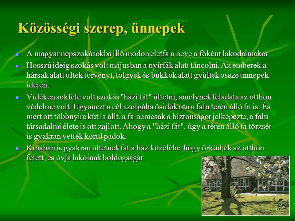 Közösségi szerep, ünnepek  A magyar népszokásokba illő módon életfa a neve a főként lakodalmakor  Hosszú ideig szokás volt májusban a nyírfák alatt