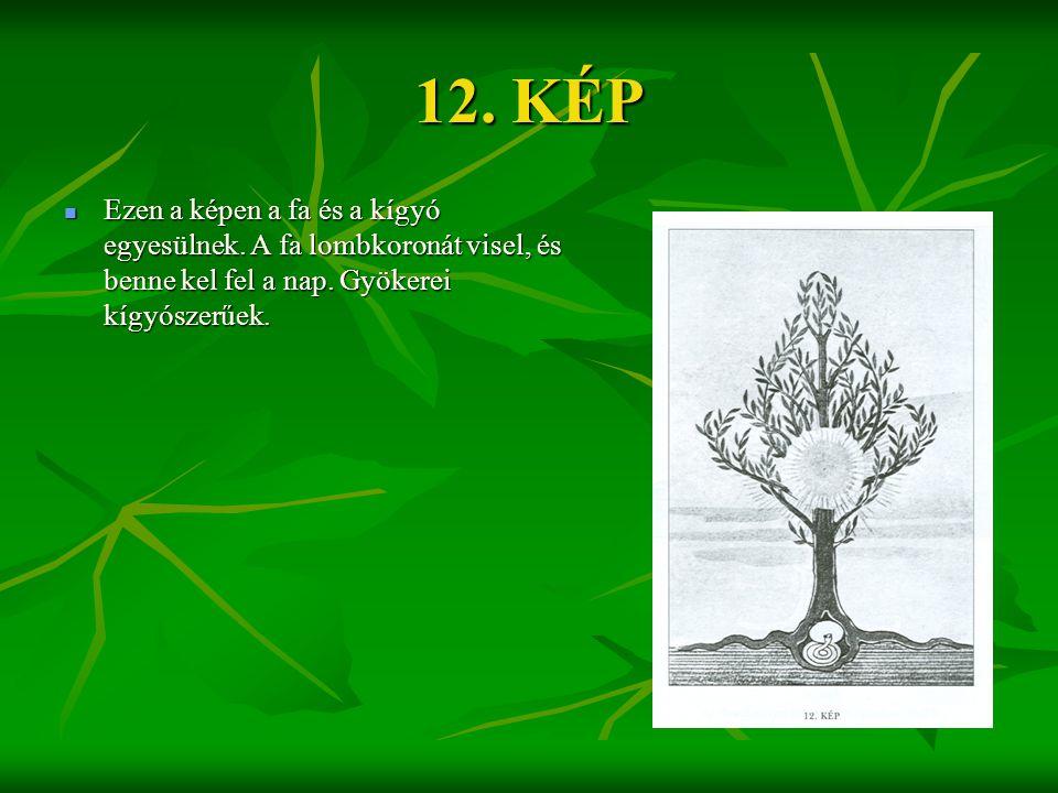 12. KÉP  Ezen a képen a fa és a kígyó egyesülnek. A fa lombkoronát visel, és benne kel fel a nap. Gyökerei kígyószerűek.