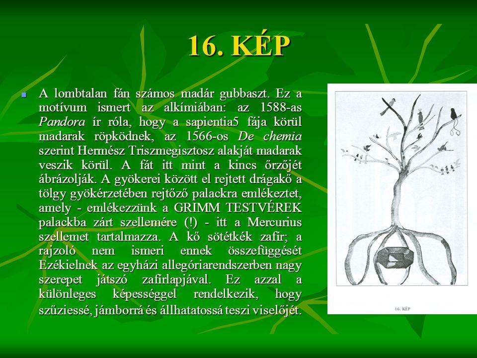 16. KÉP  A lombtalan fán számos madár gubbaszt. Ez a motívum ismert az alkímiában: az 1588-as Pandora ír róla, hogy a sapientia5 fája körül madarak