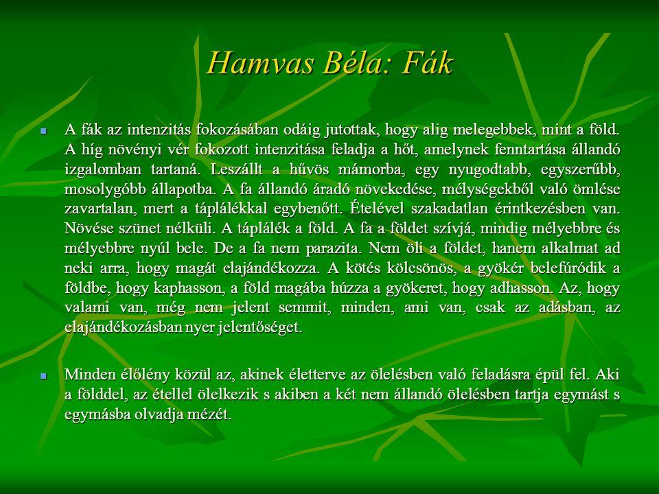 Hamvas Béla: Fák  A fák az intenzitás fokozásában odáig jutottak, hogy alig melegebbek, mint a föld. A híg növényi vér fokozott intenzitása feladja