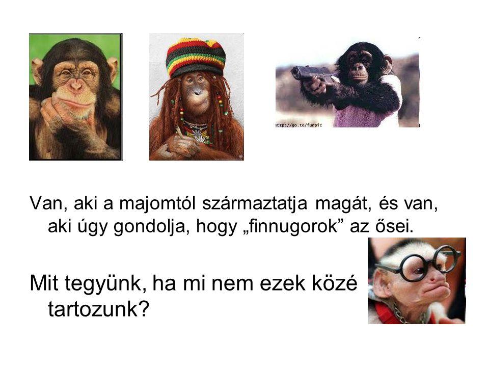 """Van, aki a majomtól származtatja magát, és van, aki úgy gondolja, hogy """"finnugorok"""" az ősei. Mit tegyünk, ha mi nem ezek közé tartozunk?"""
