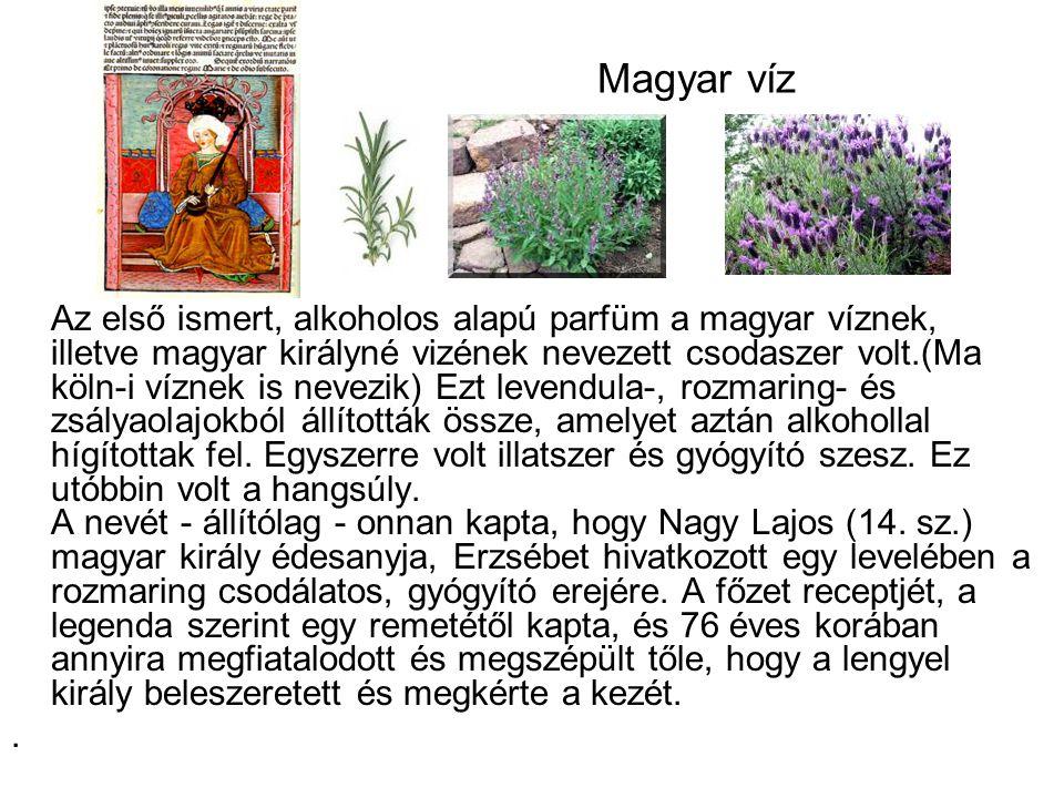 Magyar víz Az első ismert, alkoholos alapú parfüm a magyar víznek, illetve magyar királyné vizének nevezett csodaszer volt.(Ma köln-i víznek is nevezi