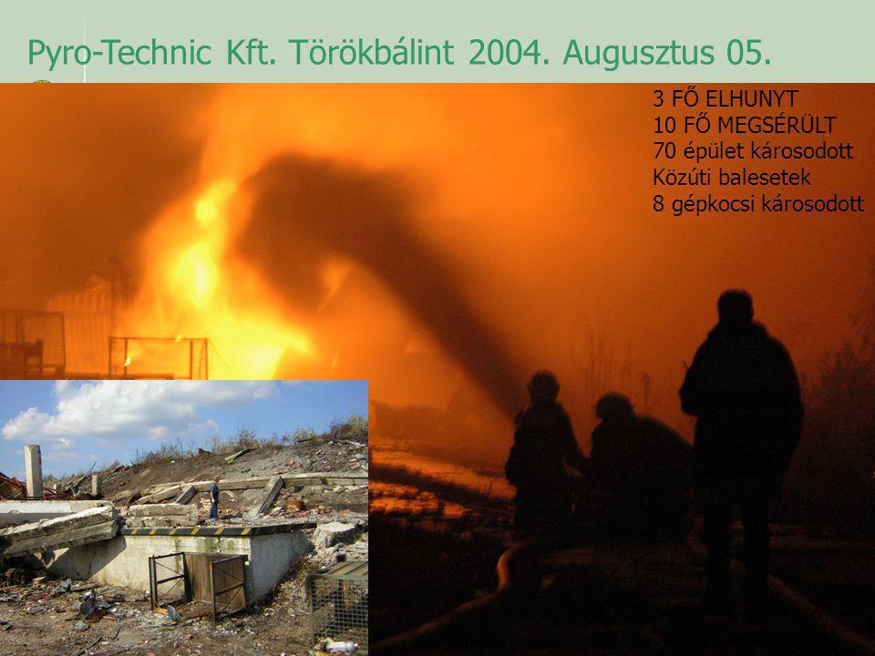Pyro-Technic Kft. Törökbálint 2004. Augusztus 05. 3 FŐ ELHUNYT 10 FŐ MEGSÉRÜLT 70 épület károsodott Közúti balesetek 8 gépkocsi károsodott