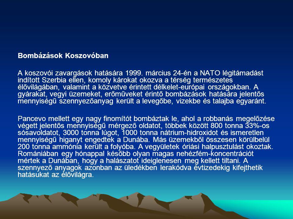 Bombázások Koszovóban A koszovói zavargások hatására 1999.