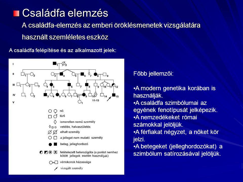 Családfa elemzés A családfa-elemzés az emberi öröklésmenetek vizsgálatára használt szemléletes eszköz A családfa felépítése és az alkalmazott jelek: F
