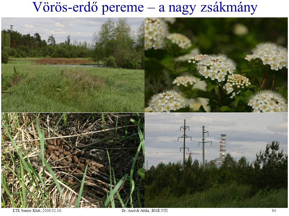 Dr. Aszódi Attila, BME NTI64ETE Senior Klub, 2006.02.16. Vörös-erdő pereme – a nagy zsákmány