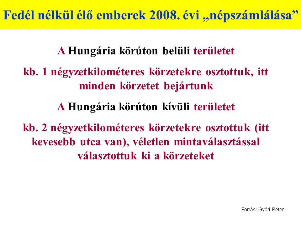 """Fedél nélkül élő emberek 2008.évi """"népszámlálása A Hungária körúton belüli területet kb."""