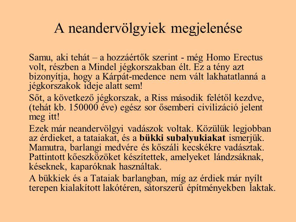 A neandervölgyiek megjelenése Samu, aki tehát – a hozzáértők szerint - még Homo Erectus volt, részben a Mindel jégkorszakban élt. Ez a tény azt bizony