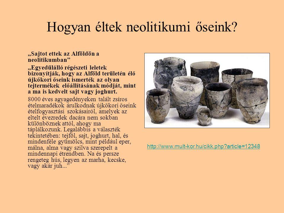 """Hogyan éltek neolitikumi őseink? """"Sajtot ettek az Alföldön a neolitikumban"""" """"Egyedülálló régészeti leletek bizonyítják, hogy az Alföld területén élő ú"""