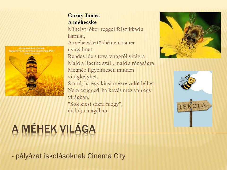 - pályázat iskolásoknak Cinema City Garay János: A méhecske Mihelyt jókor reggel felszikkad a harmat, A méhecske többé nem ismer nyugalmat. Repdes ide