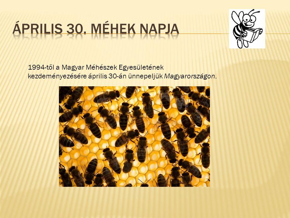 1994-től a Magyar Méhészek Egyesületének kezdeményezésére április 30-án ünnepeljük Magyarországon.