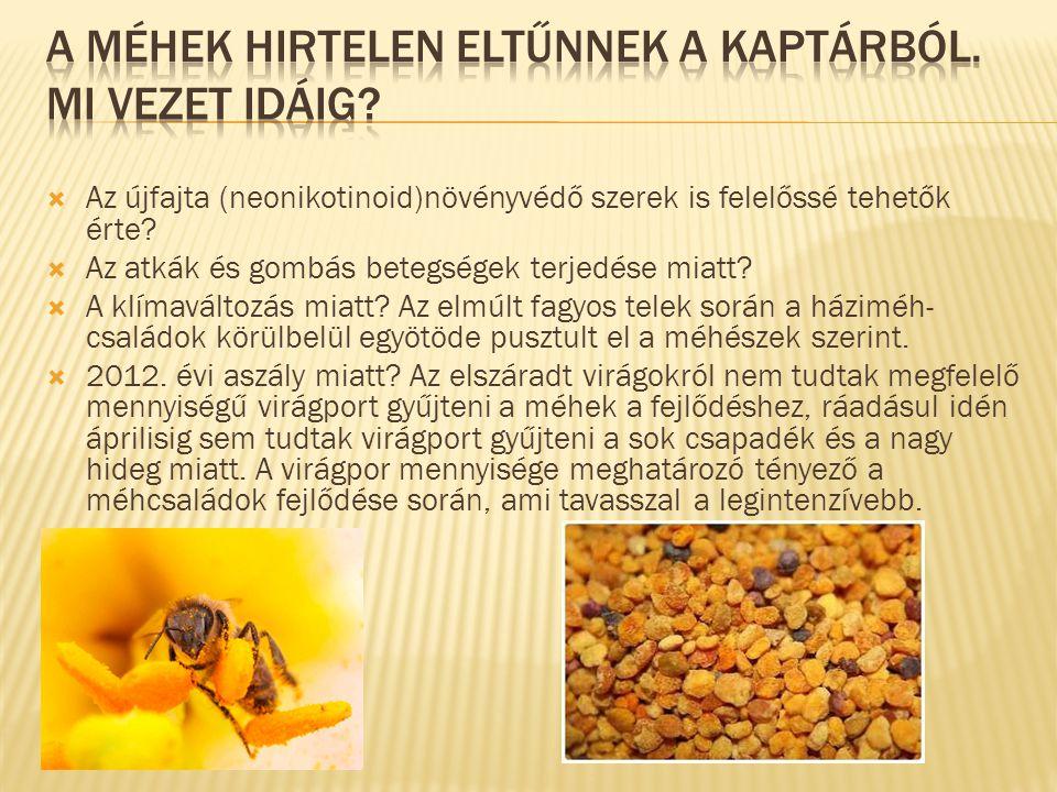  Az enyhe januárban az anyaméhek elkezdték rakni a petéket, a kis rovarokat a termelők minden igyekezete ellenére azonban a februári zord fagyok megtizedelték, a dolgozók ugyanis azzal voltak elfoglalva, hogy magukat melegítsék.
