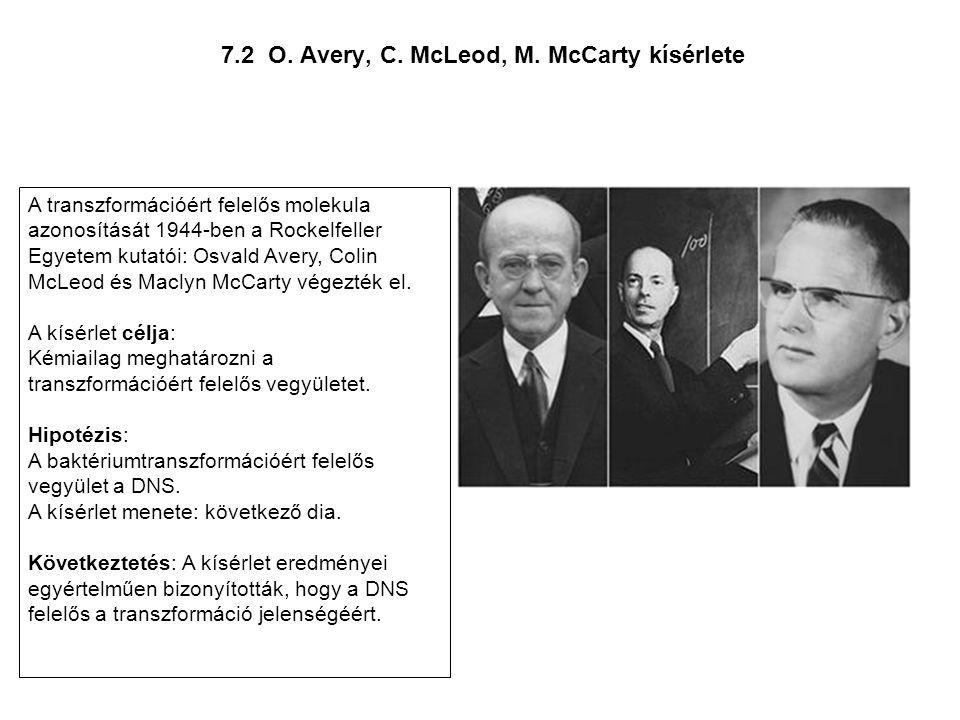 7.2 O. Avery, C. McLeod, M. McCarty kísérlete A transzformációért felelős molekula azonosítását 1944-ben a Rockelfeller Egyetem kutatói: Osvald Avery,