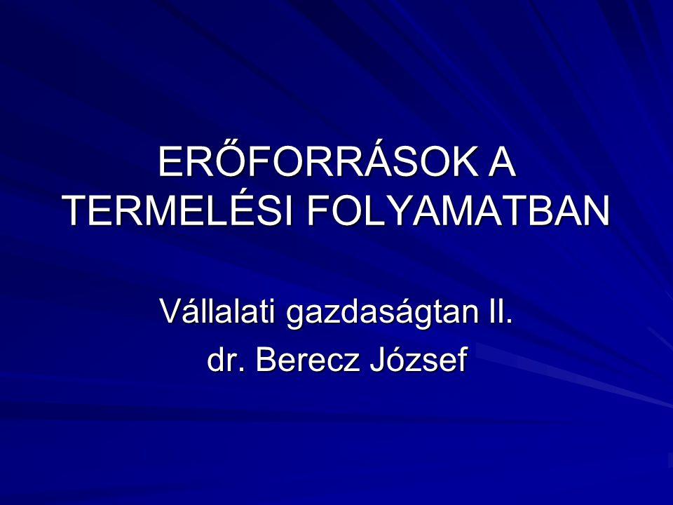 ERŐFORRÁSOK A TERMELÉSI FOLYAMATBAN Vállalati gazdaságtan II. dr. Berecz József