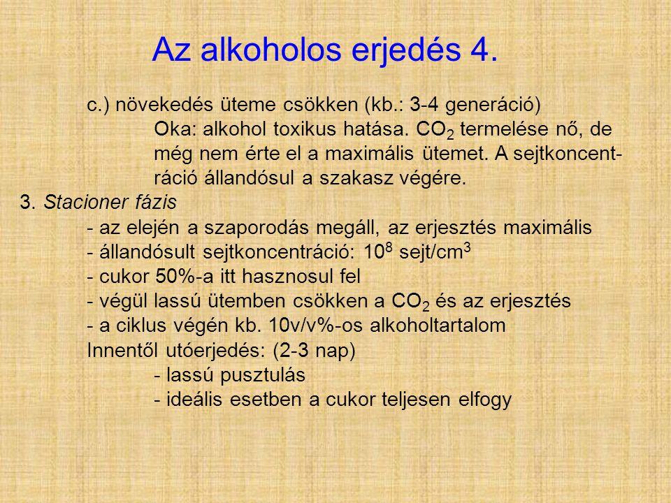 c.) növekedés üteme csökken (kb.: 3-4 generáció) Oka: alkohol toxikus hatása. CO 2 termelése nő, de még nem érte el a maximális ütemet. A sejtkoncent-
