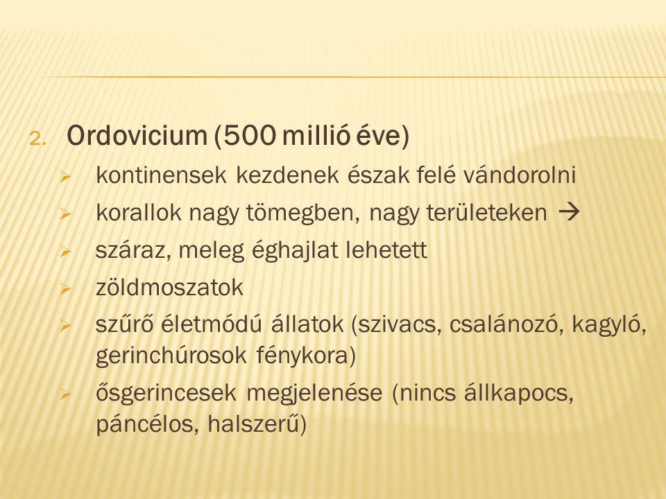 2. Ordovicium (500 millió éve)  kontinensek kezdenek észak felé vándorolni  korallok nagy tömegben, nagy területeken   száraz, meleg éghajlat lehe
