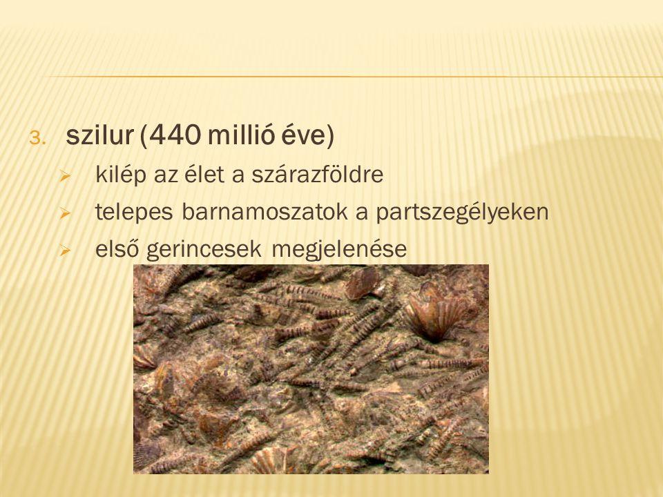 3. szilur (440 millió éve)  kilép az élet a szárazföldre  telepes barnamoszatok a partszegélyeken  első gerincesek megjelenése