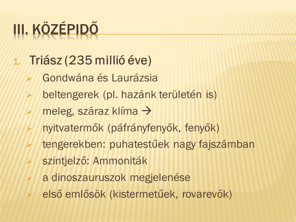 1. Triász (235 millió éve)  Gondwána és Laurázsia  beltengerek (pl. hazánk területén is)  meleg, száraz klíma   nyitvatermők (páfrányfenyők, feny