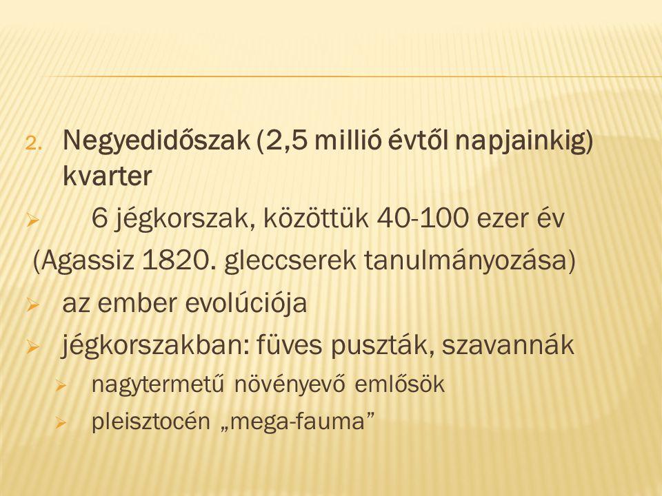 2. Negyedidőszak (2,5 millió évtől napjainkig) kvarter  6 jégkorszak, közöttük 40-100 ezer év (Agassiz 1820. gleccserek tanulmányozása)  az ember ev