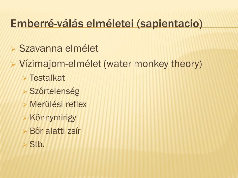 Emberré-válás elméletei (sapientacio)  Szavanna elmélet  Vízimajom-elmélet (water monkey theory)  Testalkat  Szőrtelenség  Merülési reflex  Könn