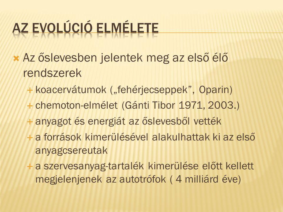 """ Az őslevesben jelentek meg az első élő rendszerek  koacervátumok (""""fehérjecseppek"""", Oparin)  chemoton-elmélet (Gánti Tibor 1971, 2003.)  anyagot"""