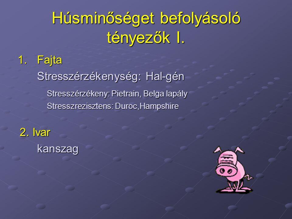 Húsminőséget befolyásoló tényezők I. 1.Fajta Stresszérzékenység: Hal-gén Stresszérzékeny: Pietrain, Belga lapály Stresszrezisztens: Duroc,Hampshire 2.