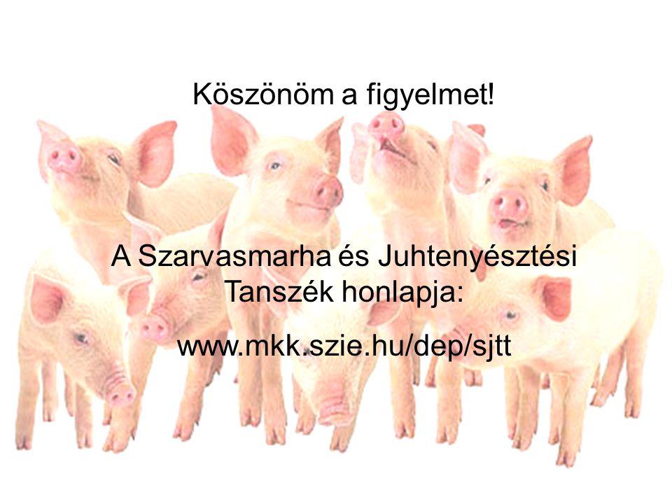Köszönöm a figyelmet! A Szarvasmarha és Juhtenyésztési Tanszék honlapja: www.mkk.szie.hu/dep/sjtt