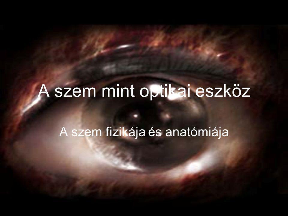 A szem mint optikai eszköz A szem fizikája és anatómiája