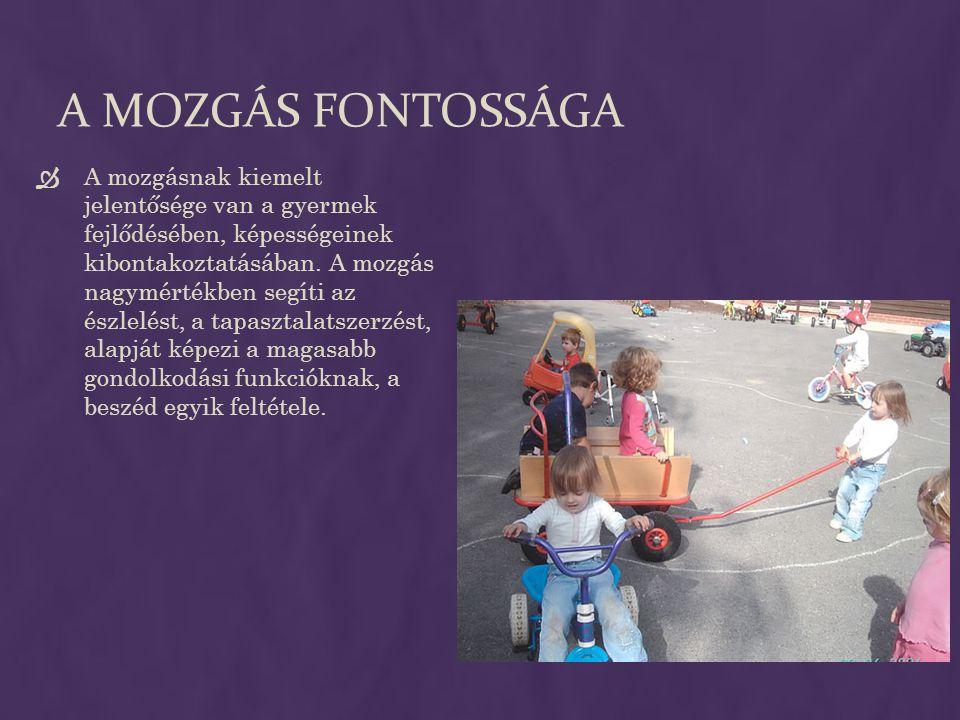 A MOZGÁS FONTOSSÁGA  A mozgásnak kiemelt jelentősége van a gyermek fejlődésében, képességeinek kibontakoztatásában. A mozgás nagymértékben segíti az