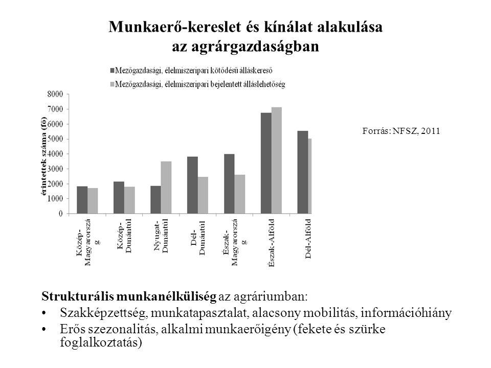 Munkaerő-kereslet és kínálat alakulása az agrárgazdaságban Strukturális munkanélküliség az agráriumban: •Szakképzettség, munkatapasztalat, alacsony mobilitás, információhiány •Erős szezonalitás, alkalmi munkaerőigény (fekete és szürke foglalkoztatás) Forrás: NFSZ, 2011