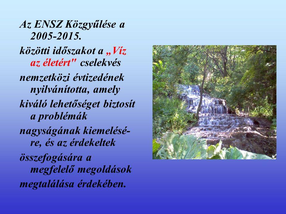 """Az ENSZ Közgyűlése a 2005-2015. közötti időszakot a """"Víz az életért"""