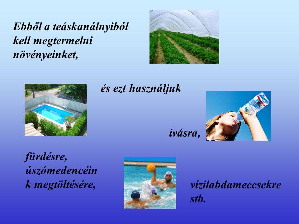 A Vízszennyezés forrásai II.