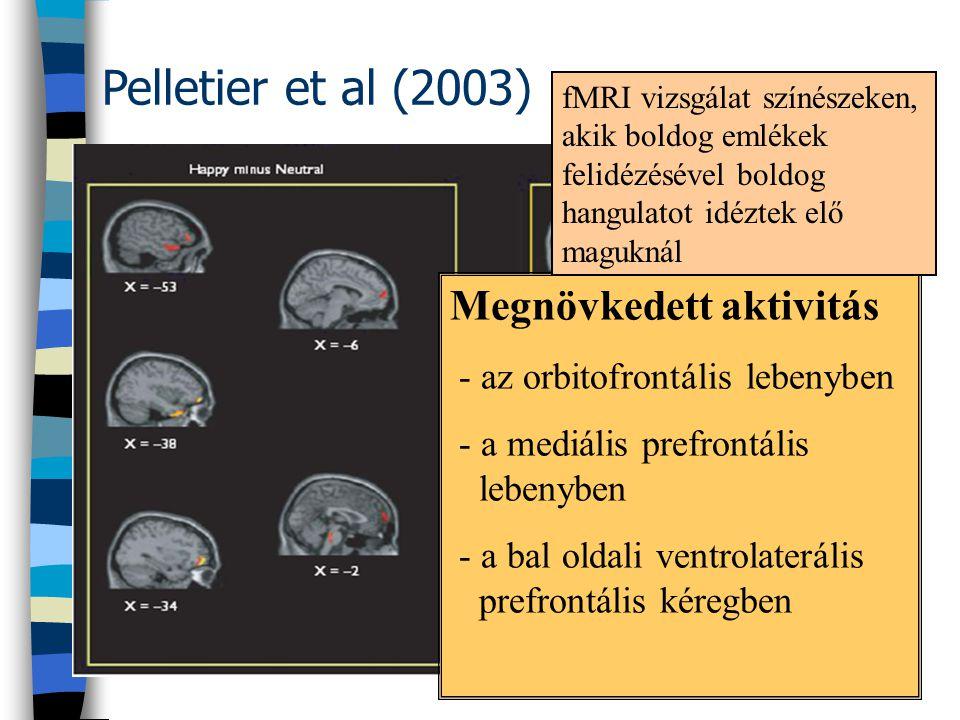 Pelletier et al (2003) Megnövkedett aktivitás - az orbitofrontális lebenyben - a mediális prefrontális lebenyben - a bal oldali ventrolaterális prefro