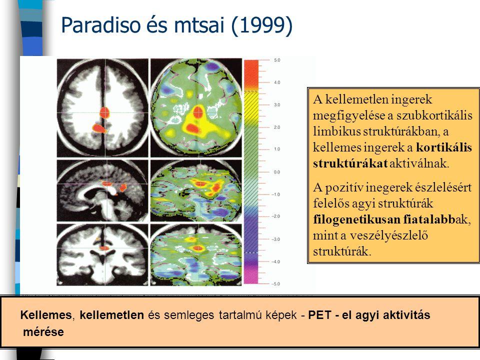 Paradiso és mtsai (1999) Kellemes, kellemetlen és semleges tartalmú képek - PET - el agyi aktivitás mérése A kellemetlen ingerek megfigyelése a szubko