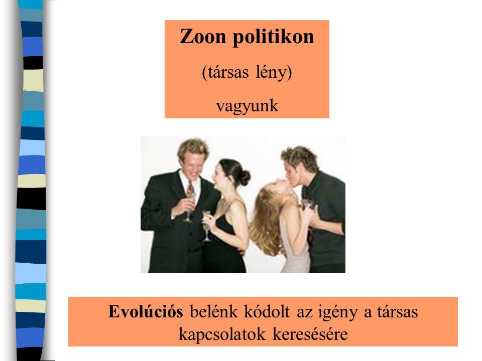 Zoon politikon (társas lény) vagyunk Evolúciós belénk kódolt az igény a társas kapcsolatok keresésére
