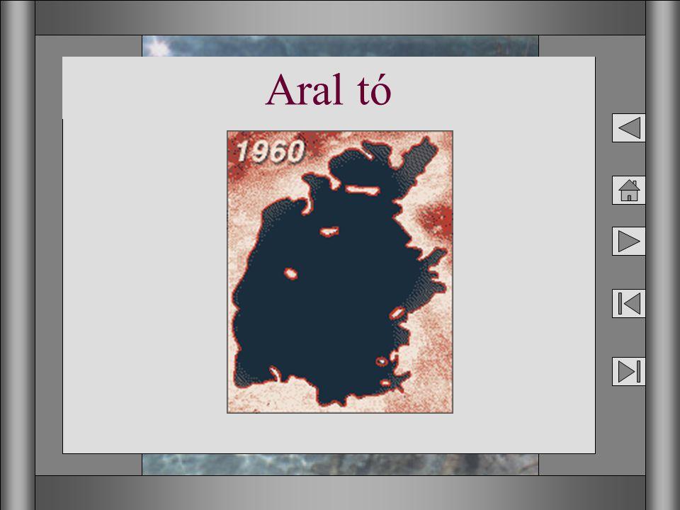14 Aral tó